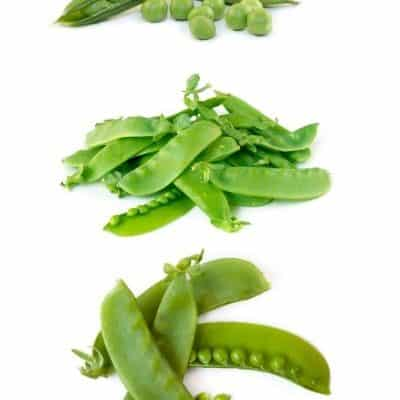 Different Types of Peas visual